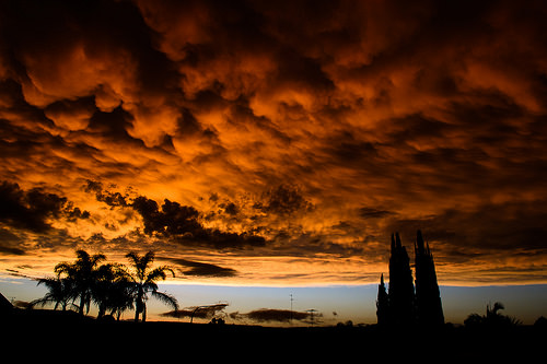 photo credit: After the Storm via photopin (license)